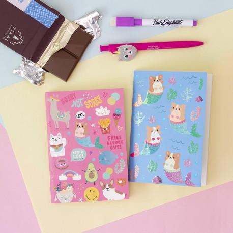 Libretas Diseños Varios pack x 2