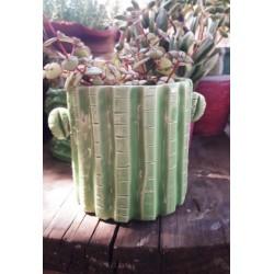 Maceta Cilíndrica de Ceramica Artesanal Cactus