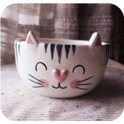 Maceta Bowl de Ceramica Artesanal Gatito Rayado
