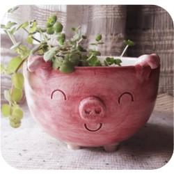 Maceta Bowl de Ceramica Artesanal Cerdito