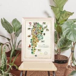 Lamina Argentima Plantas Medicinales A3
