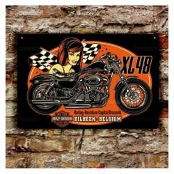 Cartel Harley Devison XL48.
